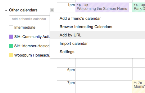 "Add a Google Calendar using the iCal feed by clicking on the little arrow by ""Other Calendars"" and chosing ""Add by URL."""
